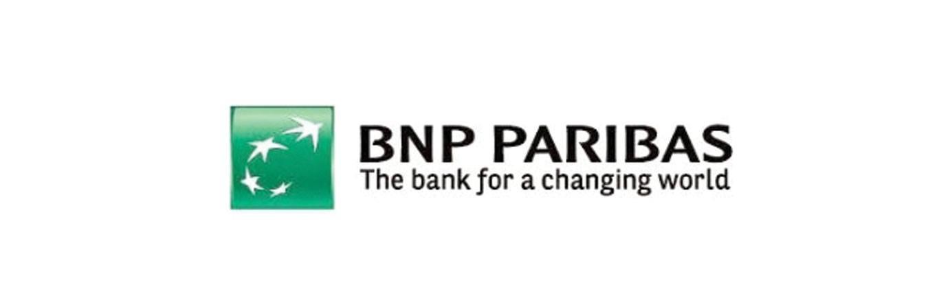 BNP Paribas Ireland logo