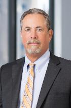 Mr David Perlman  photo