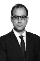 Ahmed Abdel-Hakam photo